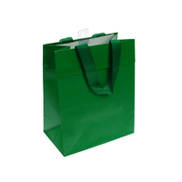 Paper Gift Bag Green Small 19.7x11.4x24.7CM