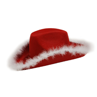 Cowboy Hat with Fur Trim